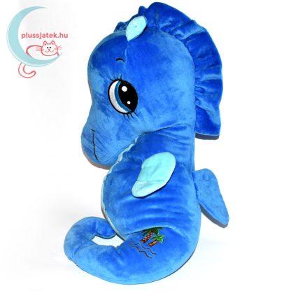 Sandy kék plüss csikóhal hátulról