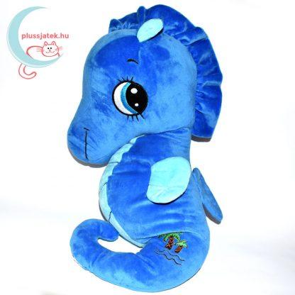 Sandy kék plüss csikóhal jobbról