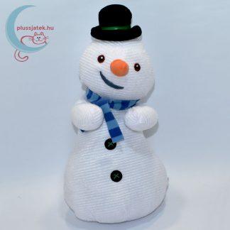 Cidri, a hóember plüss - Dr. Plüssi
