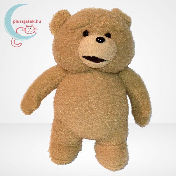 Beszélő Ted plüss maci