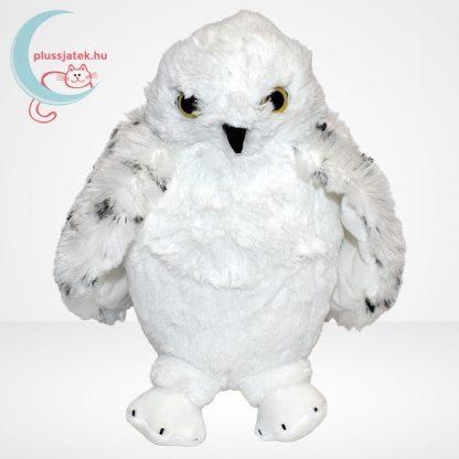 Hedwig bagoly plüss (Harry Potter) (The Noble Collection), szemből