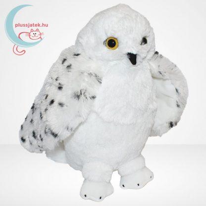 Hedwig bagoly plüss (Harry Potter) (The Noble Collection), jobbról