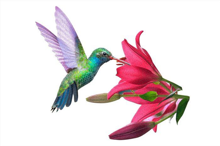 Wow poszter méretű forma puzzle - Kolibri, 300 db, elölről, a kép kirakva