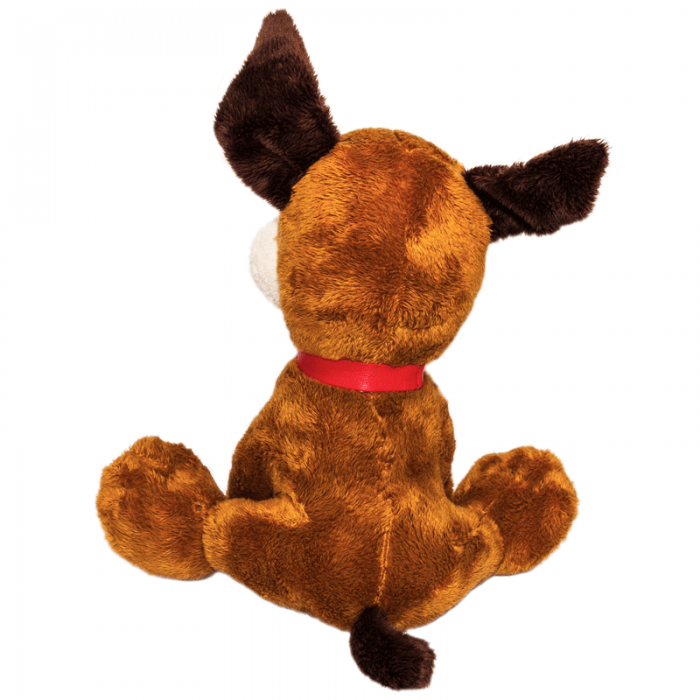 Cuki nyakörves kutyus hátulról