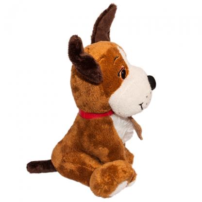 Cuki nyakörves kutyus oldalról