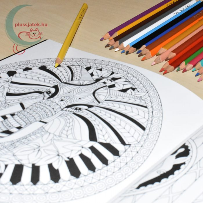 Dream Journey felnőtt színező, kifestő (22 képes) minta, ceruzákkal