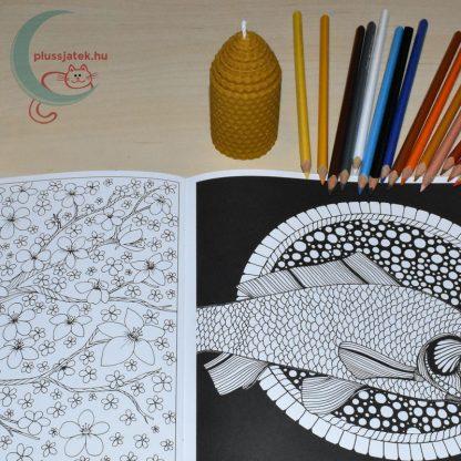 Dream Journey felnőtt színező, kifestő (22 képes) minta, ceruzákkal, méhviasz gyertyával