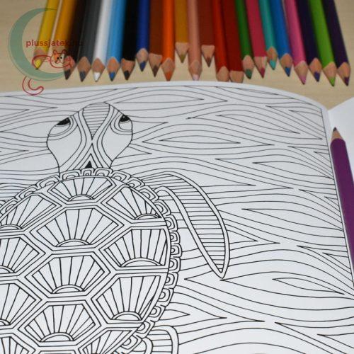 Dream Journey felnőtt színező, kifestő (22 képes) minta, ceruzákkal (teknős)